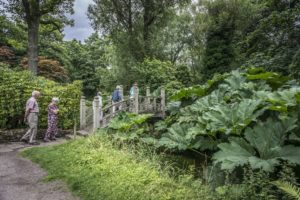 Complimentary visit to Winterbourne's Gardens